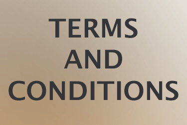 Homepage Icon: Terms-&-Conditions